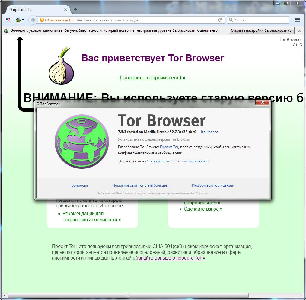 Скачать тор браузер бесплатно через торрент гирда use flash in tor browser gydra